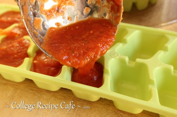 Creating leftover pasta sauce cubes