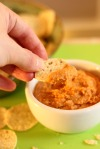 Nacho Hummus Dip